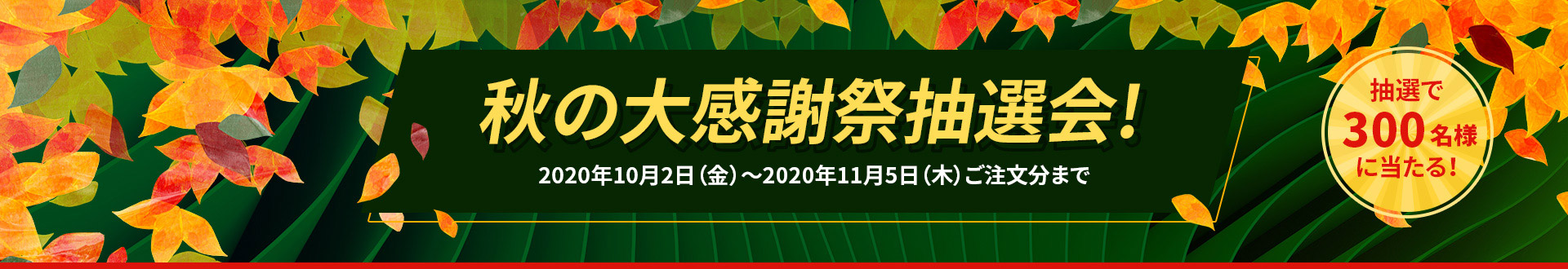 2020-autumn-sale-page-v1/Top-banner