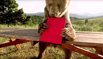 Lenovo presents: Bear vs Box